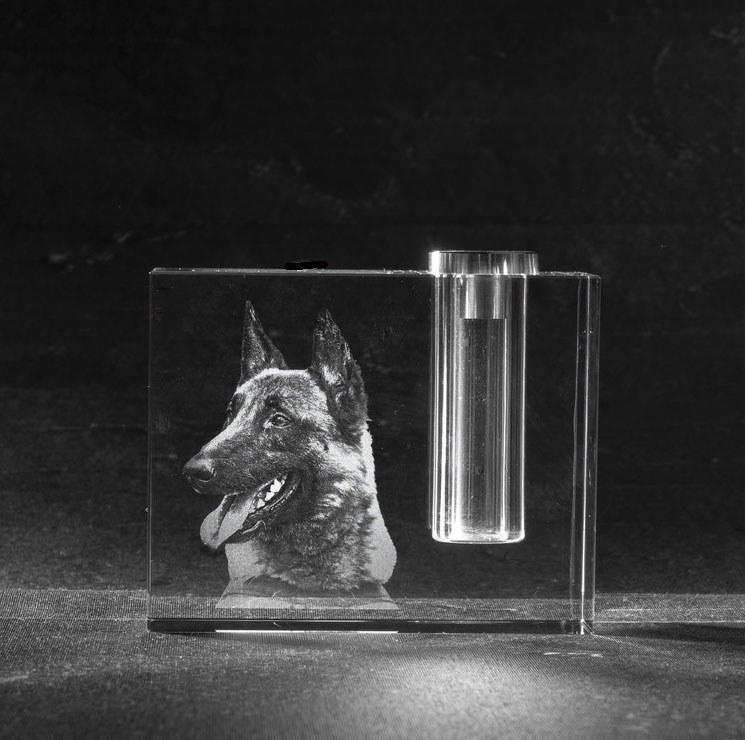 Foto in glas Urn Bloem